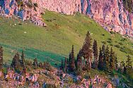 Early morning light casts a glow on the rocks of Yakima Peak near Tipsoo Lake in Mount Rainier National Park, Washington State, USA