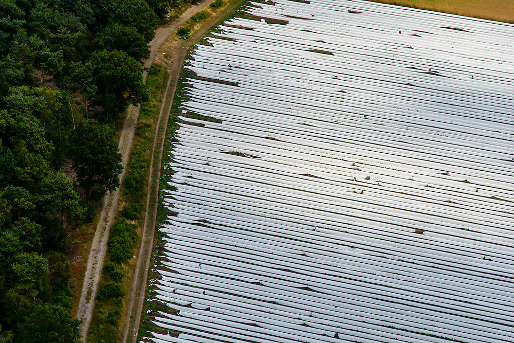 Nederland, Noord-Brabant, Gemeente Someren, 26-06-2014;  <br /> Akkers met asperges onder landbouwplastic.<br /> Fields of asparagus under plastic cover<br /> luchtfoto (toeslag op standaard tarieven);<br /> aerial photo (additional fee required);<br /> copyright foto/photo Siebe Swart.