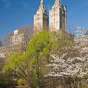 The San Remo building overlooking Central Park, New York City in Spring