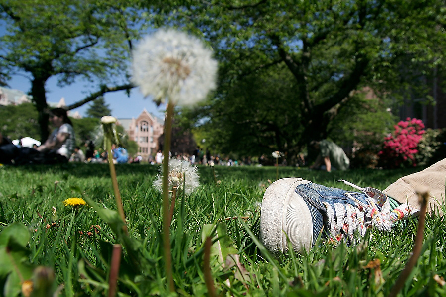 Students enjoy a beautiful summer day in the Quad on the University of Washington campus in Seattle, Washington.