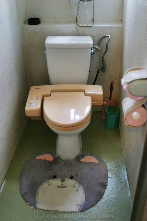 Toilet in a rural coffee shop in Okinawa, Japan. The toilet has automatic anal sprinklers and a blow dryer.
