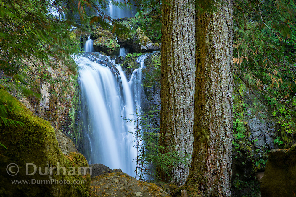 Falls Creek Falls is among the largest and most powerful waterfalls in southern Washington. Fed by an extensive network of springs and streams, Falls Creek sends a considerable volume of water hurtling 335 feet over its headwall in three distinct steps. The upper tier veils 109 feet in a broad fan-shaped fall which skips down the initial tier of the cliff.