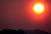 Dawn at Arasaki Nature Reserve, sunrise, orange, red