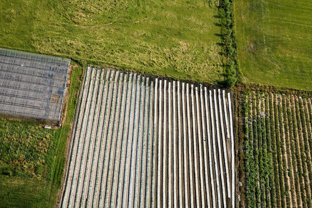 Nederland, Brabant, Gemeente Zundert, 04-07-2006; tuinbouwgebied: kassen (links), midden akkers afgedekt met plastic (om groei te bevorderen en in verband met irrigatie); landbouw, groenten, vegetatie, glastuinbouw, voedselproductie, landbouwplastic, landschapsabstractie, vlakverdeling; luchtfoto (toeslag); aerial photo (additional fee required); .foto Siebe Swart / photo Siebe Swart