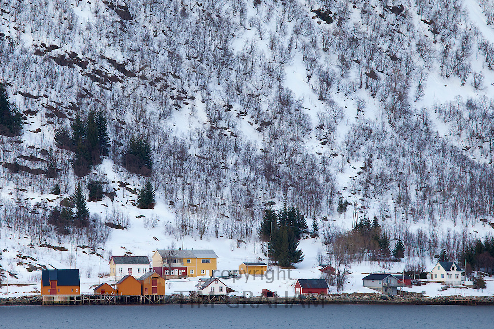 Homes and fishing huts in hamlet on Kvaloya Island near Lauklines in Arctic Circle Northern Norway