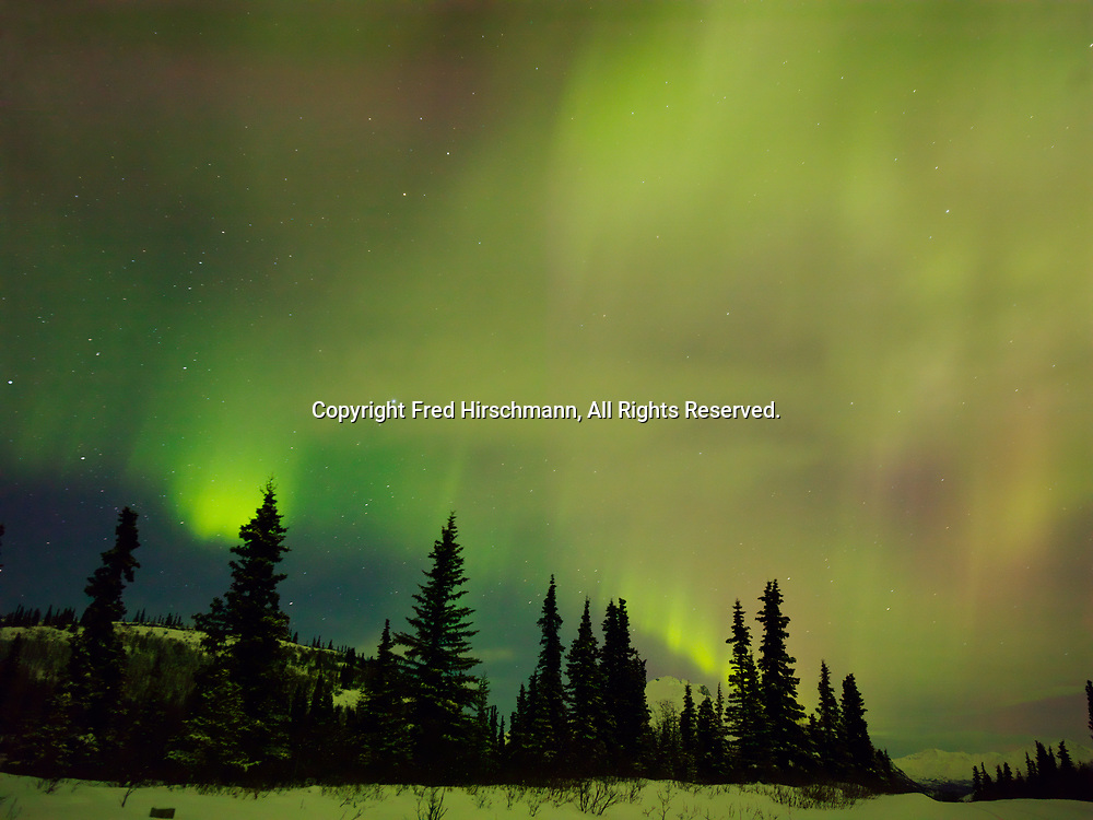 Green, red and violet auroras during St. Patrick's Day Geomagnetic Storm, early morning hours of March 17, 2015, Glacier View, Alaska.