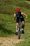 riding a Mountain bike in a blooming field, Israel