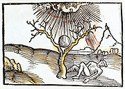 Thunderbolt or lightning, 1508. Man sheltering under a tree struck by lightning or a thunderbolt. From 'Margarita philosophica' ('The Pearl of Philosophy') by Gregor Reisch. (Basle, 1508). This book was an early encyclopaedia of knowledge for students.