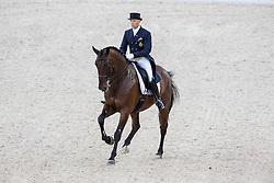 Jeroen Devroe, (BEL), Eres DL - Grand Prix Team Competition Dressage - Alltech FEI World Equestrian Games™ 2014 - Normandy, France.<br /> © Hippo Foto Team - Leanjo de Koster<br /> 25/06/14
