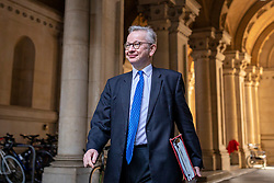 © Licensed to London News Pictures. 20/10/2020. London, UK. Minister for the Cabinet Office Michael Gove returns to Downing Street after the cabinet meeting. Photo credit: Rob Pinney/LNP