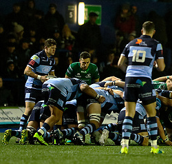Lloyd Williams of Cardiff Blues waits to put in at the scrum<br /> <br /> Photographer Simon King/Replay Images<br /> <br /> Guinness PRO14 Round 14 - Cardiff Blues v Connacht - Saturday 26th January 2019 - Cardiff Arms Park - Cardiff<br /> <br /> World Copyright © Replay Images . All rights reserved. info@replayimages.co.uk - http://replayimages.co.uk
