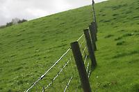 Fields with dividing fence, Kilkenny, Ireland
