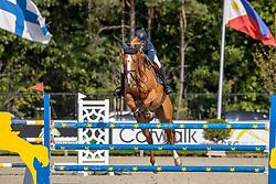 De Bock Dries, BEL, O'malley van de Bucxtale<br /> Belgian Championship 6 years old horses<br /> SenTower Park - Opglabbeek 2020<br /> © Hippo Foto - Dirk Caremans<br />  13/09/2020