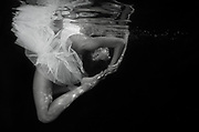 Underwater Fine Art Photograph