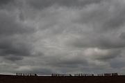 Areado_MG, Brasil.<br /> <br /> Colheita da cana-de-acucar na BR 491 em Areado, Minas Gerais.<br /> <br /> The sugar cane crops, in the highway BR 491, in Areado, Minas Gerais.<br /> <br /> Foto: LEO DRUMOND / NITRO