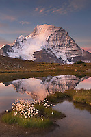 Sunrise over Mount Robson, highest mountain in the Canadian Rockies, elevation 3,954m (12,972ft), seen from Mumm Basin, Mount Robson Provincial Park British Columbia
