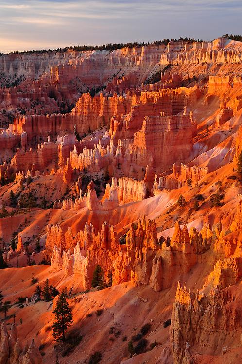 Hoodoo spires in Utah's Bryce Canyon National Park.