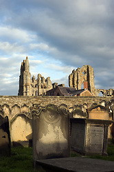 Whitby Abbey Gothic ruined monastery viewed from St Marys Church Yard.18 September 2010 .Images © Paul David Drabble