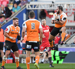 Cheetahs Niel Marais<br /> <br /> Photographer Mike Jones/Replay Images<br /> <br /> Guinness PRO14 Round 22 - Scarlets v Cheetahs - Saturday 5th May 2018 - Parc Y Scarlets - Llanelli<br /> <br /> World Copyright © Replay Images . All rights reserved. info@replayimages.co.uk - http://replayimages.co.uk