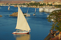 Egypte, Haute Egypte, vallée du Nil, Assouan, felouques sur le Nil // Egypt, Nile valley, Aswan, Feluccas on the Nile River