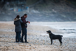 A family and their dog on Fistral Beach in Newquay, Cornwall.