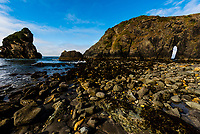 A rocky beach at Harris Beach State Park, Brookings, Oregon USA.