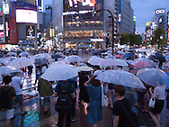 August 22, 2016 - Tokyo, Japan: At the bustling crosswalk in front of Tokyo's Shibuya Station where thousands pass through every five minutes, it was a sea of umbrellas due to Typhoon Mindulle hitting Tokyo. This typhoon, the ninth of this season, hit greater Tokyo and the outlying Kanto Plain area with the eye making landfall in neighboring Chiba Prefecture at around 12:30 p.m. Packing sustained winds of 126 kph (78 mph) and gusts as high as 180 kph (112 mph), Mindulle was the equivalent of a category 1 hurricane. It caused flooding as well as delays and cancelations to rail service including commuter lines, long distance express trains and the Shinkansen bullet train. In addition to rail disruption,s 244 flights were canceled at Tokyo's Haneda Airport. (Torin Boyd/Polaris).