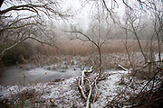 Frozen winter landscape at Bleasby. These ponds freeze over each year creating a seasonal misty frozen scene.
