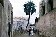 Historic buildings in ancient town of Zebid, Zabid, Yemen 1998 UNESCO World Heritage Site tourists explore streets