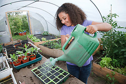 Girl watering seeds in a tray