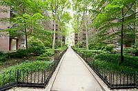 Garden at 48-02 43rd Street