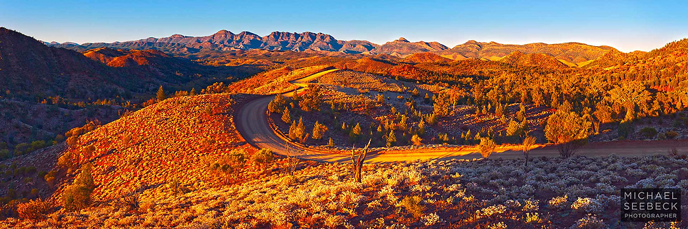 A dirt track winds through some spectacular country in the Flinders Ranges, captured in early morning golden sunlight, just after dawn.<br /> <br /> Code: HASF0003<br /> <br /> Limited Edition Print
