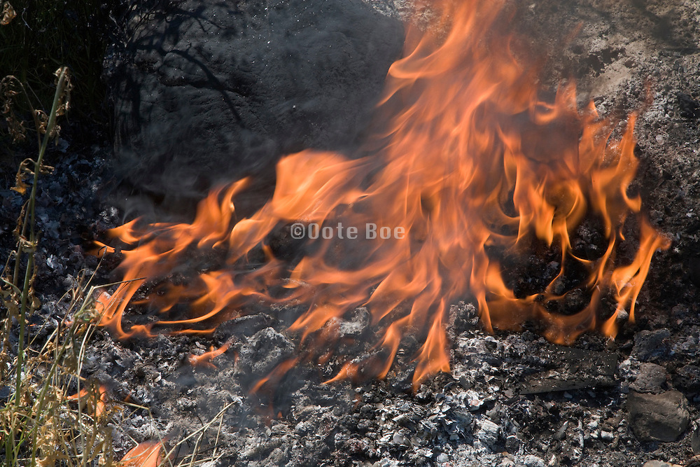 close up of flames
