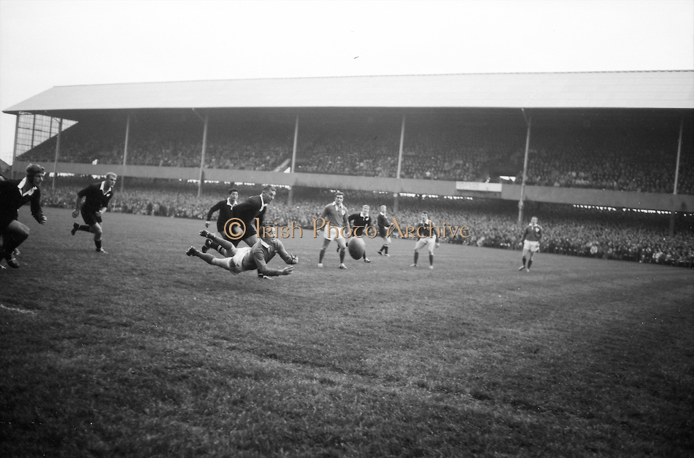 Irish scrum half and captain, JC Kelly, gets the ball away, closely marked by All Blacks forward, Tremain, ..Irish Rugby Football Union, Ireland v New Zealand, Tour Match, Landsdowne Road, Dublin, Ireland, Saturday 7th December, 1963,.7.12.1963, 12.7.1963,..Referee- H Keenen, Rugby Football Union, ..Score- Ireland 5 - 6 New Zealand, ..Irish Team, ..T J Kiernan, Wearing number 15 Irish jersey, Full Back, Cork Constitution Rugby Football Club, Cork, Ireland,..J Fortune, Wearing number 14 Irish jersey, Right Wing, Clontarf Rugby Football Club, Dublin, Ireland,..P J Casey, Wearing number 13 Irish jersey, Right Centre, University College Dublin Rugby Football Club, Dublin, Ireland, ..J C Walsh,  Wearing number 12 Irish jersey, Left Centre, University college Cork Football Club, Cork, Ireland,..A T A Duggan, Wearing number 11 Irish jersey, Left Wing, Landsdowne Rugby Football Club, Dublin, Ireland,..M A English, Wearing number 10 Irish jersey, Stand Off, Landsdowne Rugby Football Club, Dublin, Ireland, ..J C Kelly, Wearing number 9 Irish jersey, Captain of the Irish team, Scrum Half, University College Dublin Rugby Football Club, Dublin, Ireland,..P J Dwyer, Wearing number 1 Irish jersey, Forward, University College Dublin Rugby Football Club, Dublin, Ireland, ..A R Dawson, Wearing number 2 Irish jersey, Forward, Wanderers Rugby Football Club, Dublin, Ireland, ..R J McLoughlin, Wearing number 3 Irish jersey, Forward, Gosforth Rugby Football Club, Newcastle, England, ..W J McBride, Wearing number 4 Irish jersey, Forward, Ballymena Rugby Football Club, Antrim, Northern Ireland,..W A Mulcahy, Wearing number 5 Irish jersey, Forward, Bective Rangers Rugby Football Club, Dublin, Ireland,  ..E P McGuire, Wearing number 6 Irish jersey, Forward, University college Galway Football Club, Galway, Ireland,  ..P J A O' Sullivan, Wearing  Number 8 Irish jersey, Forward, Galwegians Rugby Football Club, Galway, Ireland,..N A Murphy, Wearing number 7 Irish jersey, Forward, Cork Constitutio