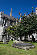 .John Boyd McNeills tomb in the grounds of St. Patricks Cathedral. Captain of the HMS Ajax, he was lost at sea 1861 from the pier at Dun Laoghaire, while trying to rescue ships that were being swept away in a storm. Buried in the grounds of St. Patrick's, his Newfoundland dog is said to haunt both the tomb, and his statue, inside the Cathedral...