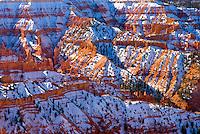 Fresh snow on Cedar Breaks National Monument Utah USA beautiful