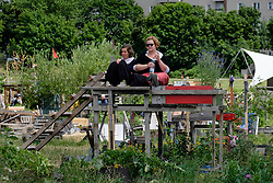 Community garden project at Tempelhof Park former airport in Berlin Germany