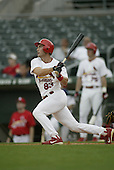 2004 MLB