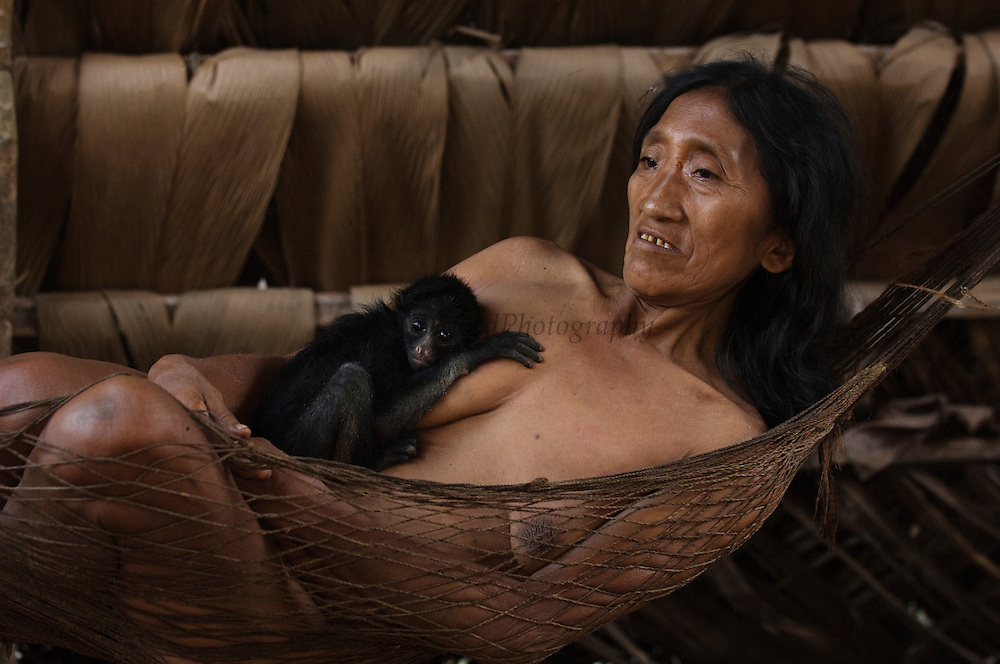 Huaorani Indian woman - Kano Yeti - with her pet White-bellied Spider Monkey (Ateles belzebuth)<br /> Amazon rainforest, ECUADOR.  South America<br /> They would have hunted the mother for meat and raized the baby as their pet<br /> This Indian tribe were basically uncontacted until 1956 when missionaries from the Summer Institute of Linguistics made contact with them. However there are still some groups from the tribe that remain uncontacted.  They are known as the Tagaeri & Taromanani. Traditionally these Indians were very hostile and killed many people who tried to enter into their territory. Their territory is in the Yasuni National Park which is now also being exploited for oil.