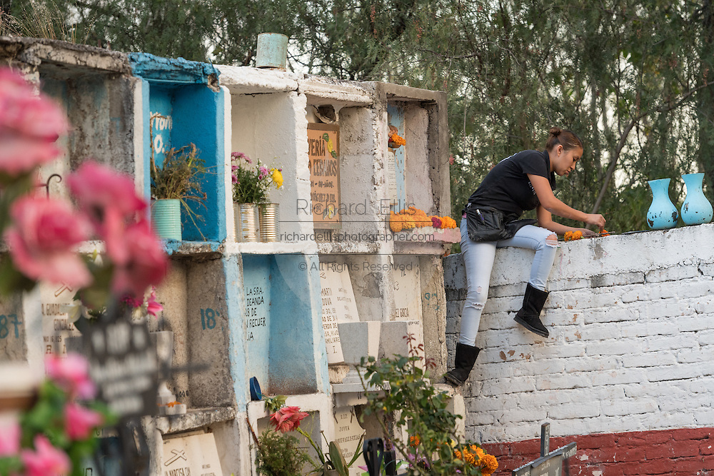 A Mexican woman arranges flowers at the grave of a relative in the Nuestra Señora de Guadalupe cemetery during the Day of the Dead festival November 1, 2016 in San Miguel de Allende, Guanajuato, Mexico. The week-long celebration is a time when Mexicans welcome the dead back to earth for a visit and celebrate life.
