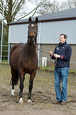C-Two stables - Carmeliet 2017