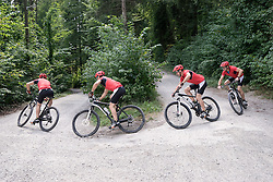 Montage of mountain biker riding on dirt road through forest, Bavaria, Germany