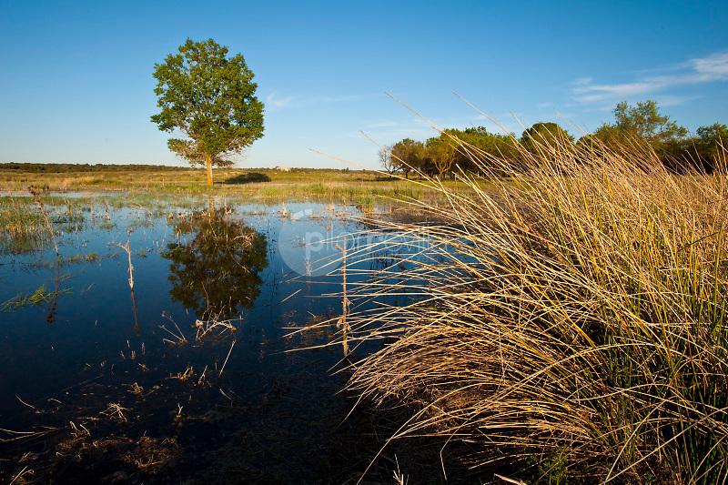 Laguna Blanca. Parque Natural Lagunas de Ruidera. Villahermosa. Ciudad Real ©Antonio Real Hurtado / PILAR REVILLA