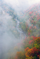 The Blackwater River meanders in a deep cut gorge during fall at Blackwater Falls State Park. The Park located in the Allegheny Mountains of Tucker County, West Virginia, offers scenic beauty and plenty of outdoor recreation including hiking, biking, and cross country skiing..