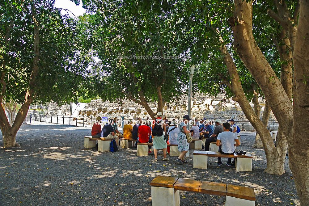 Group of pilgrims on a pilgrimage at Capernaum Sea of Galilee, Israel