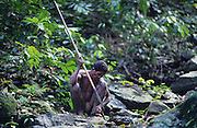 BATAK Philippines. Batak indigenous people whom live in  the mountainous rainforest in Palawan island. They and their land are under threat from development and deforestation.   The live using shifting cultivation, hunting with spears and guns, and gathering herbs and plants from the  forest.
