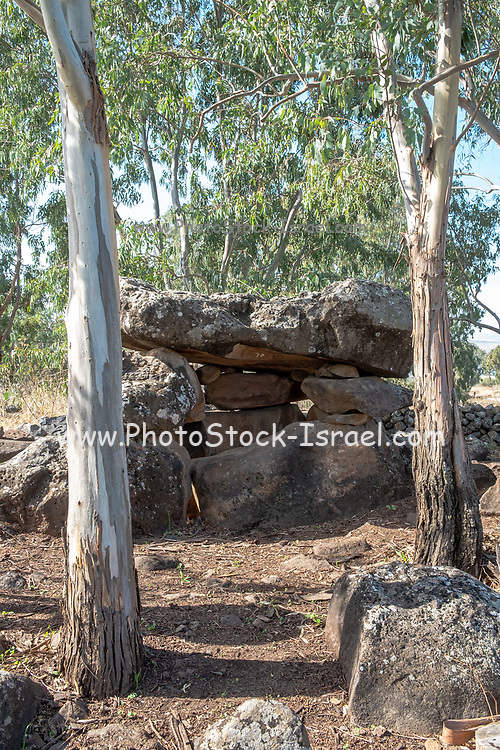 """The Dolmen field, Gamla, Golan Heights, Israel A dolmen is a type of single-chamber megalithic tomb, usually consisting of two or more vertical megaliths supporting a large flat horizontal capstone or """"table"""". Most date from the early Neolithic (4000–3000 BC) and were sometimes covered with earth or smaller stones to form a tumulus. Small pad-stones may be wedged between the cap and supporting stones to achieve a level appearance. In many instances, the covering has weathered away, leaving only the stone """"skeleton"""" of the mound intact."""