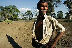 """A man weeds a hot pepper patch on land at the El Charcote cattle ranch, where he is squatting with hundreds of other people.  The Venezuela government recently began a three month """"intervention"""", during which they will evaluate the productivity of the land on the British owned cattle ranch.  If the government determines the lands to be under-producing, or that the proper titles are not in order, they may redistribute those lands to the poor farmers who have been squatting on the lands."""