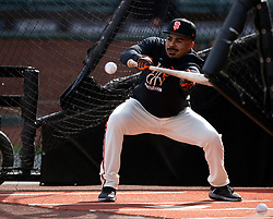 Oct 7, 2021; San Francisco, CA, USA; San Francisco Giants outfielder LaMonte Wade Jr. (31) works on his bunting during NLDS workouts. Mandatory Credit: D. Ross Cameron-USA TODAY Sports