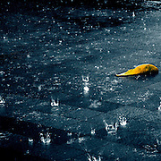 Raindrops splashing on the ground